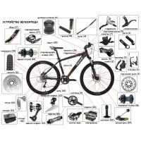 Как правильно подобрать велосипед
